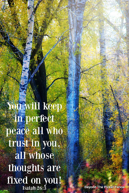 bible verse, God's word, peace, inspirational quote, fall photo, fall trees,http://bec4-beyondthepicketfence.blogspot.com/2015/10/sunday-verses_10.html