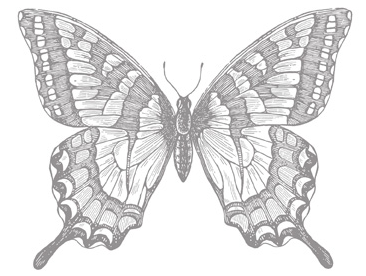 Swallowtail Stamp Brush - Digital Download