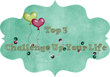 09/2016 Top 3 bei Challenge up your life