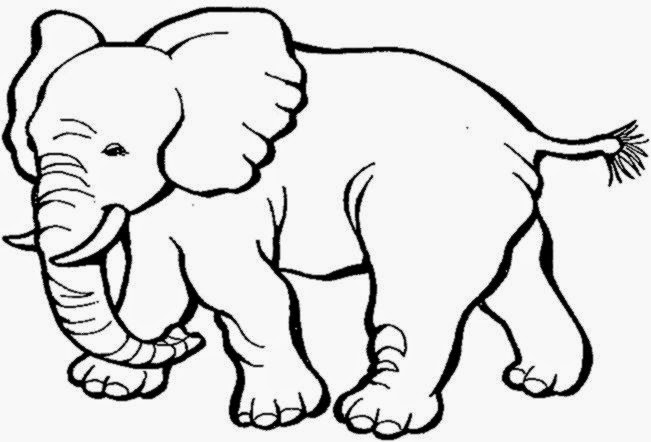 Elephant Animal Coloring Pages Printable Coloringsnet