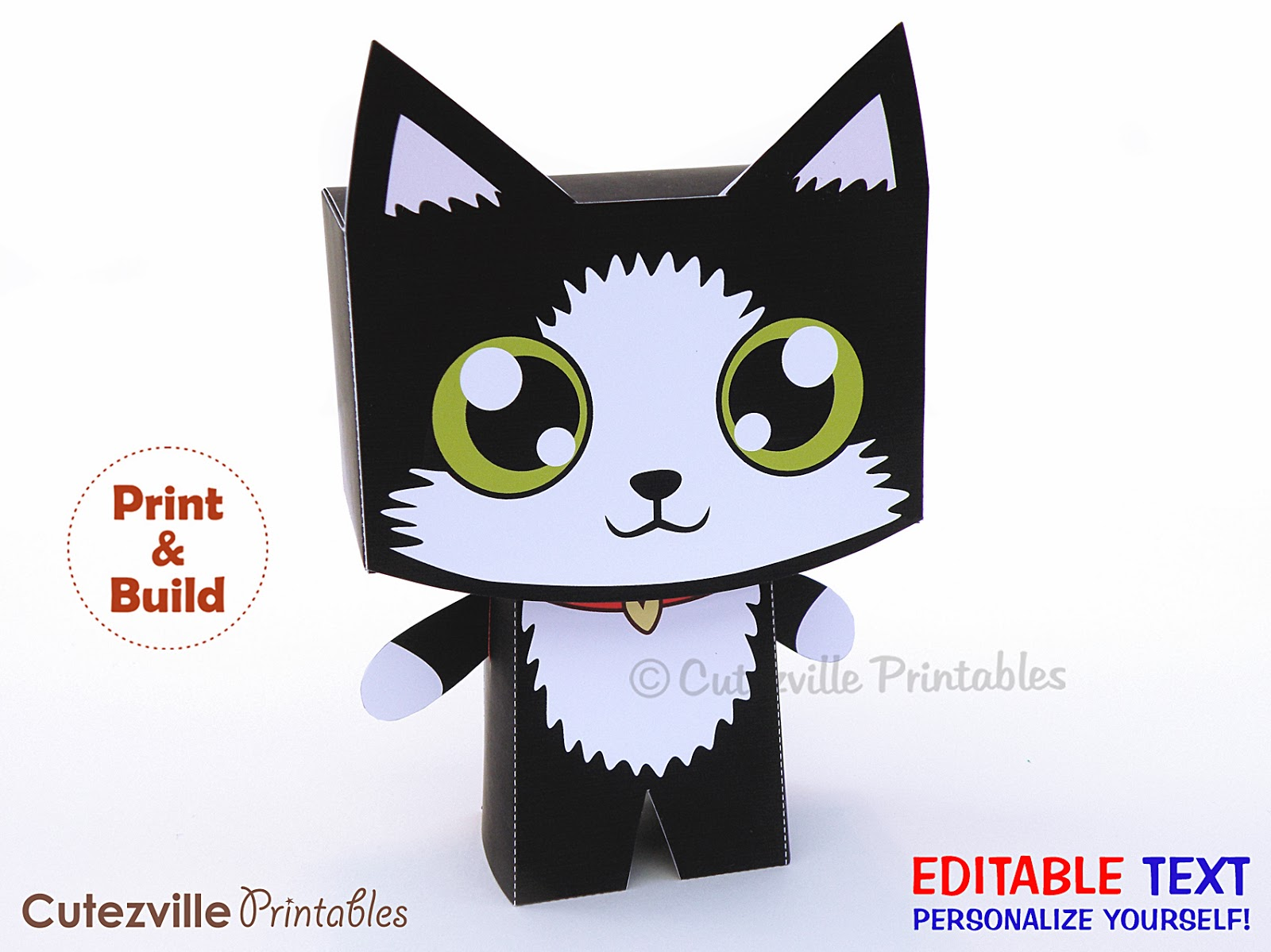 Black And White Kitten Cat Gift Box Now Available