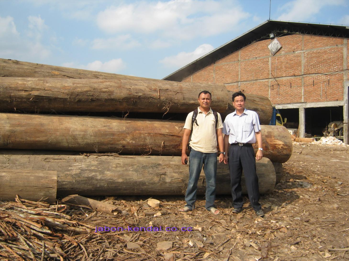 bersama direktur pt sekawan sumber sejahtera,bp krishnadi pryana.perusahaan pengolahan kayu jabon di temanggung