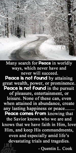 Many search for peace in worldly ways, which never have and never will succeed. Peace is not found by attaining great wealth, power, or prominence. Peace is not found in the pursuit of pleasure, entertainment, or leisure. None of these can, even when attained in abundance, create any lasting happiness or peace. - Quentin L. Cook