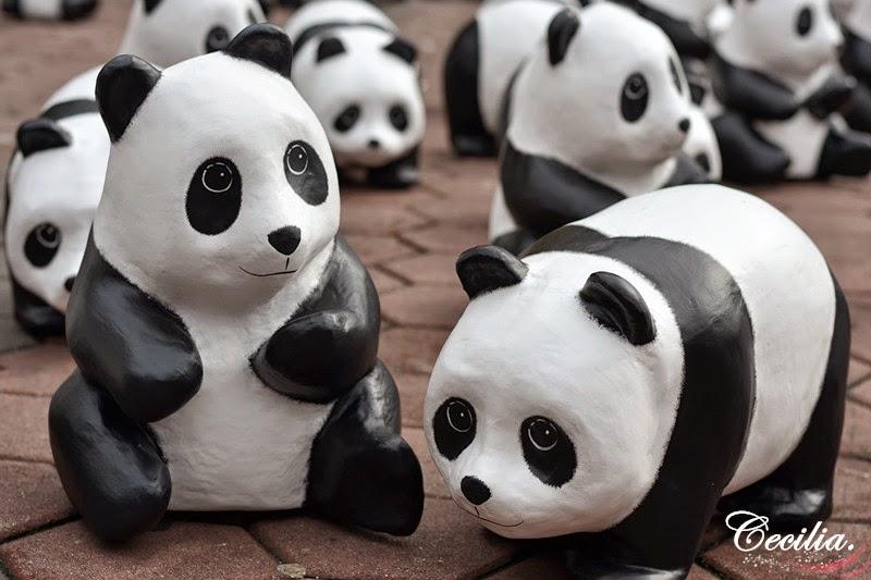 1600 Pandas World Tour in Malaysia @ Batu Caves ~ MISSCAWAII