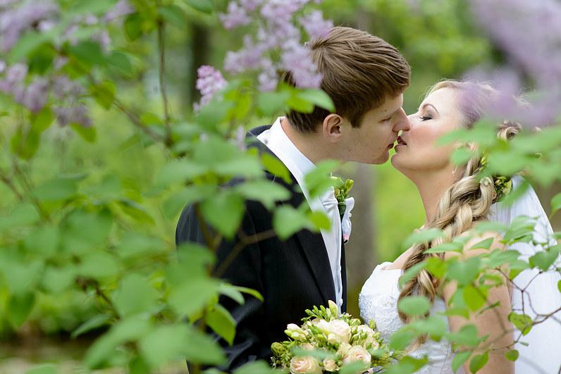 žydinčios alyvos per vestuves
