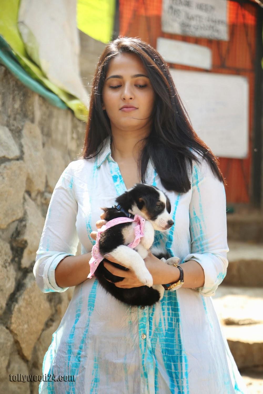 Anushka with Puppy at Blue Cross Pet Carnival Press meet-HQ-Photo-17