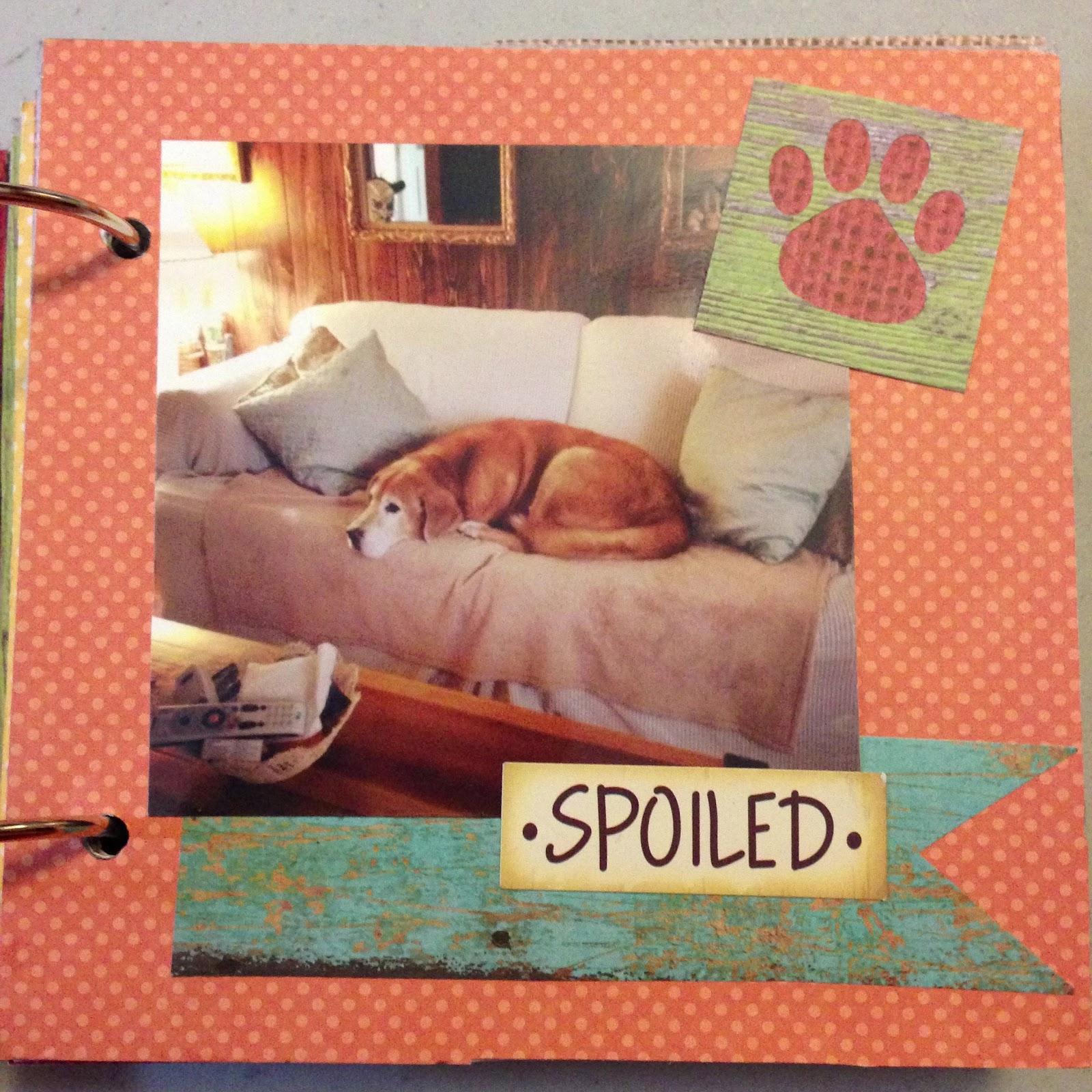 Scrapbook ideas mini books - Pet Scrapbook