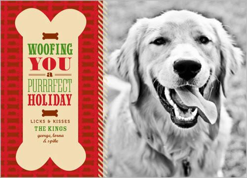 Holiday Cards for Pets  Shutterfly #PhotosYouLove
