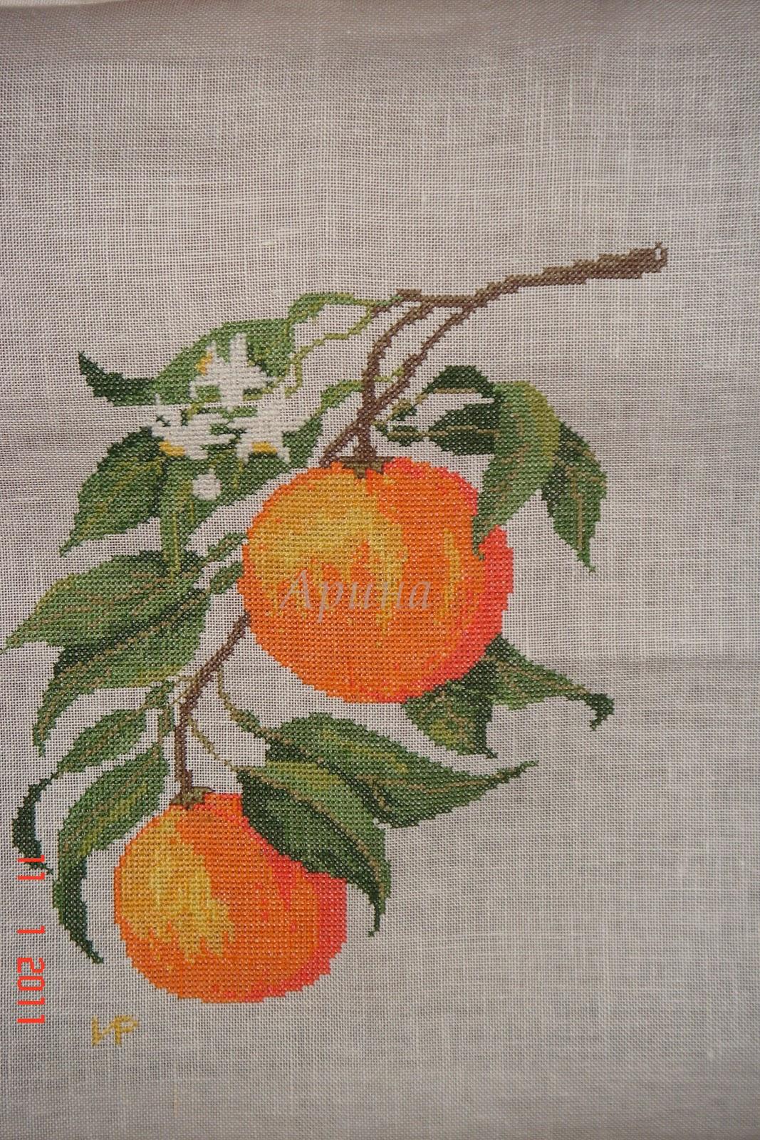 Фото апельсинов для вышивки