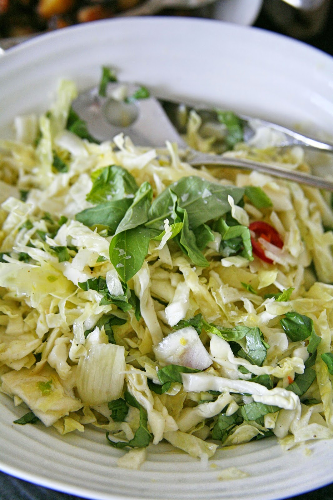 Cabbage and Fennel Salad