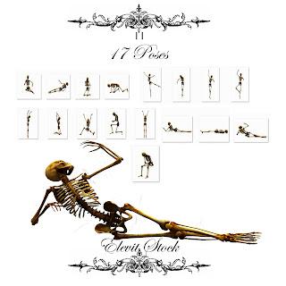 esqueleto png