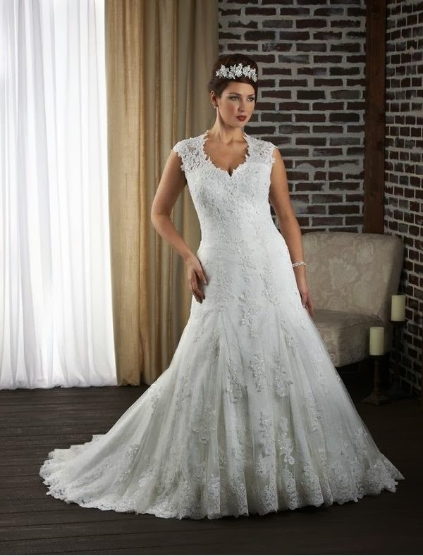 Rainingblossoms 2014 new plus size wedding gowns in for Plus size lace wedding dresses with sleeves