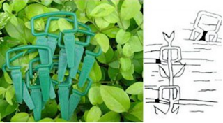 http://www.jlgreenhousesupplies.com/product/plant-support-clips/plant-clips.html