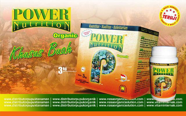 Pupuk Khusus Tanaman Buah Power Nutrition 3Kg