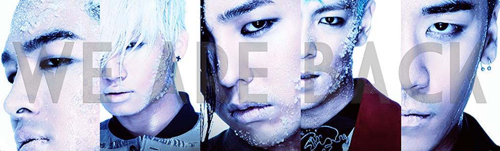 Big Bang - Fans