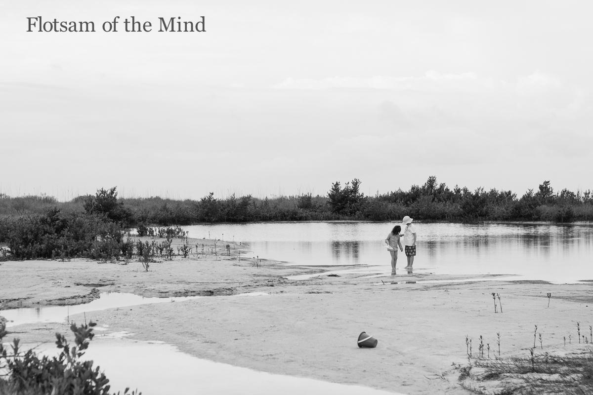 Kids at Beach - Flotsam of the Mind