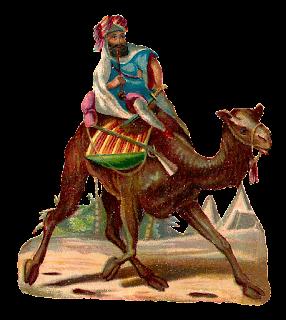 camel rider desert image