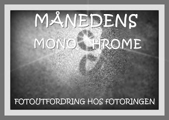 Hos Fotoringen