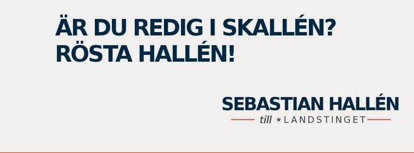 Sebastian Hallén