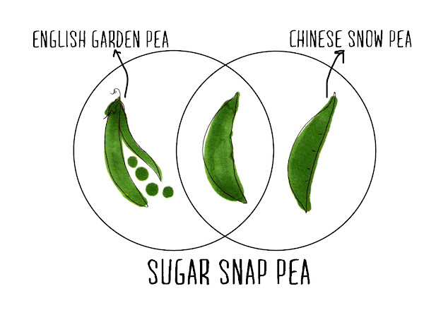 how to cook sugar snap peas on stove
