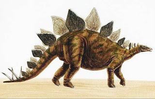 Stegosaurus - Binatang Purbakala