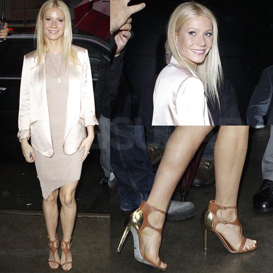 Gwyneth Paltrow Style Icon