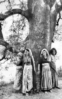 chipko movement Article on the `chipko movement` or `chipko andolan` was a forest conservation movement in india brief history, download pdf.