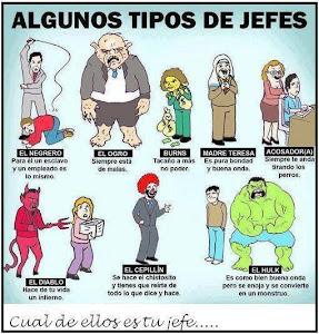 ALGUNOS TIPOS DE JEFES