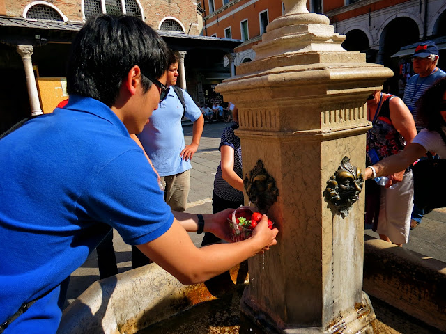 Venice wash strawberries