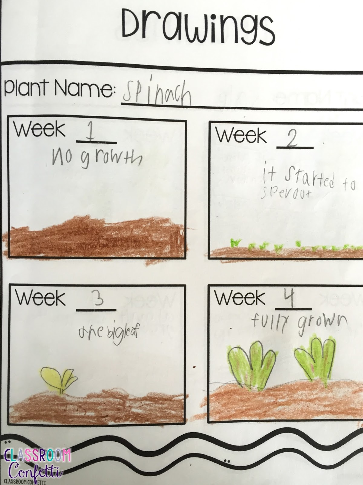 Plant Growth Journal