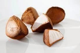 Benefits Of Andiroba (Carapa Guianensis) For Health