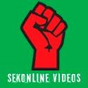 ΣΕΚ (βίντεο)