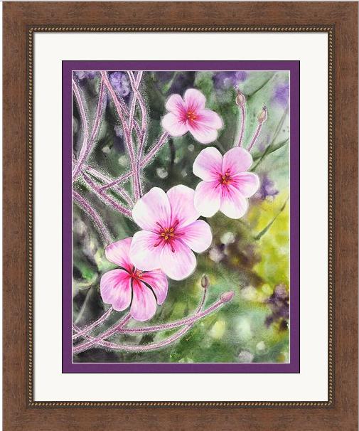 Bay Area flora