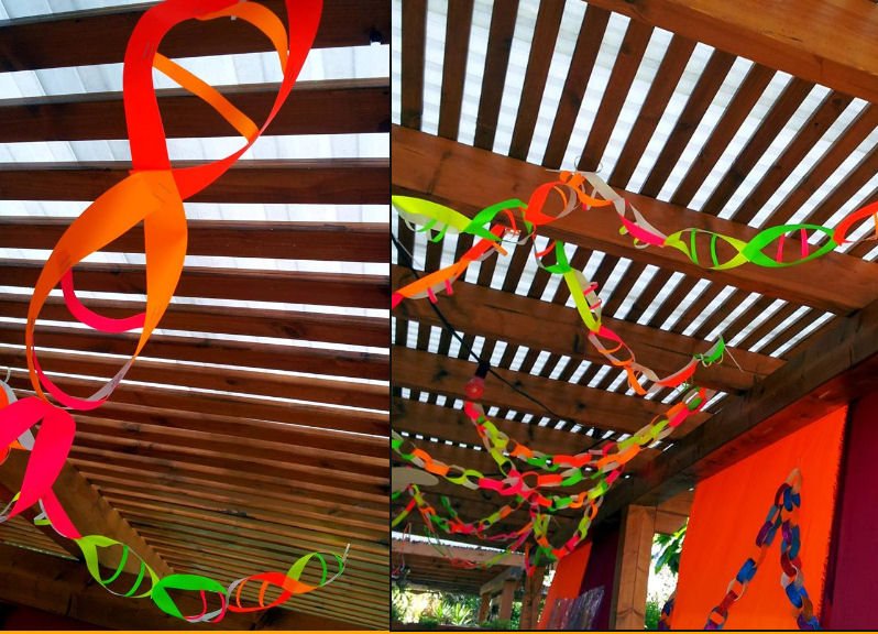 High School Biology Classroom Decoration Ideas : Medical laboratory and biomedical science dna party