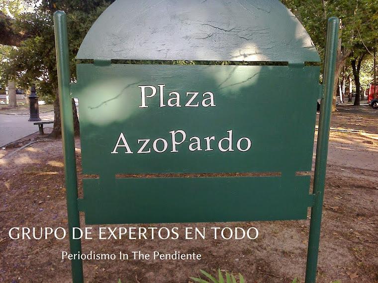 GRUPO DE EXPERTOS EN TODO