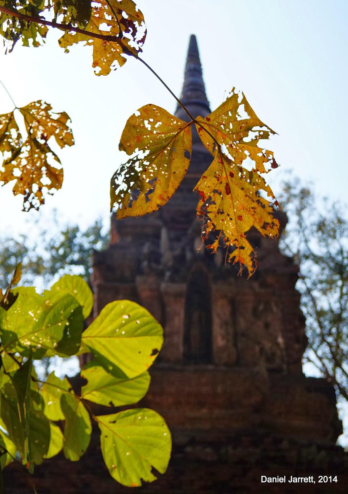 Wat Pa Sak Chiang Saen