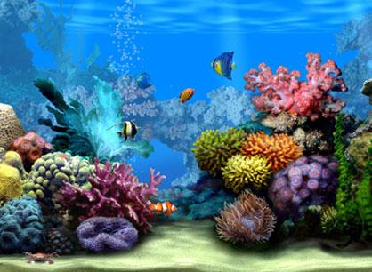 I Heart Salt Lake The Living Planet Aquarium