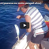 Ψάρεμα με χοντρό παραγάδι video