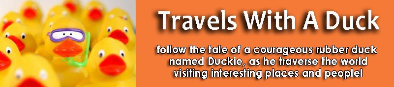 Travels With A Duck