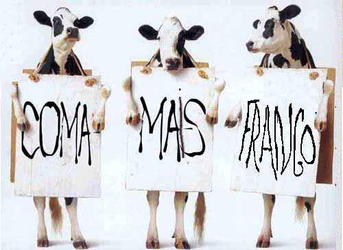 vacas dizendo coma mais frango