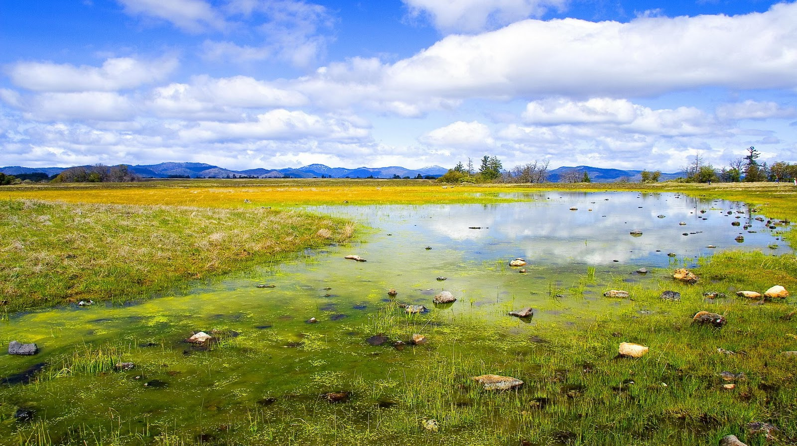 Wallpapers win 7 page 7 - Nature wallpaper windows 7 ...