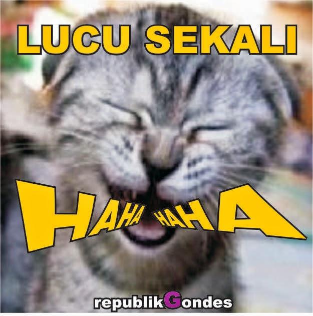 Image Result For Cerita Hewan Lucu Singkat