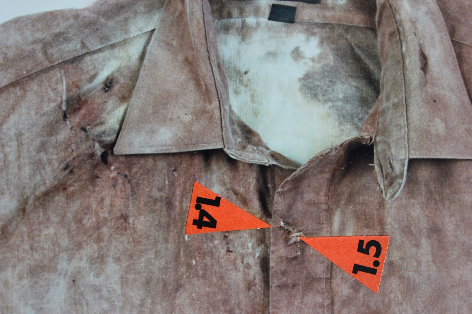 Olof Palmes skjorta 5