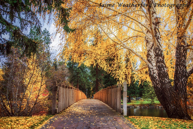 Bridge to Drake Park Fall Autumn Bend oregon drake park Jaime Weatherford