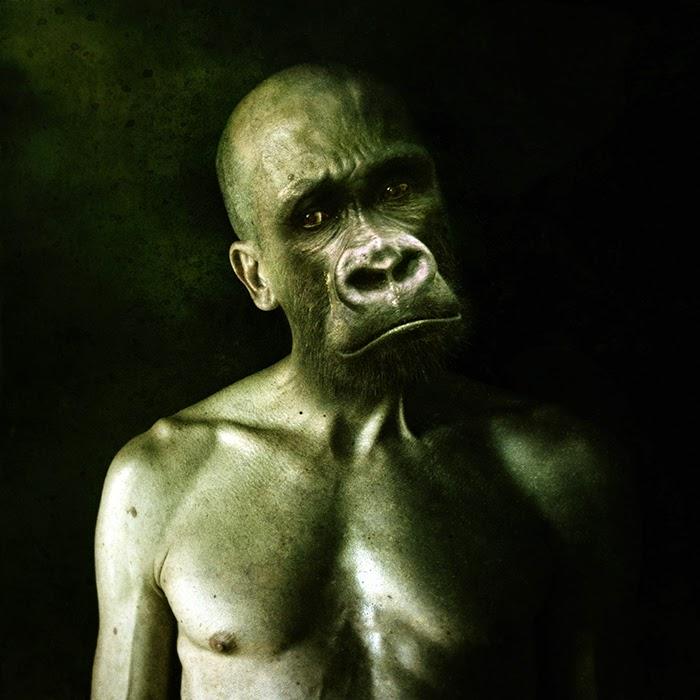 01-Francesco-Sambo-Man-Animal-Hybrids-Mashup-Photography-www-designstack-co