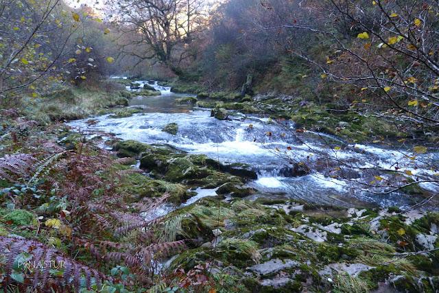 Río Casañu - Cabrales - Asturias
