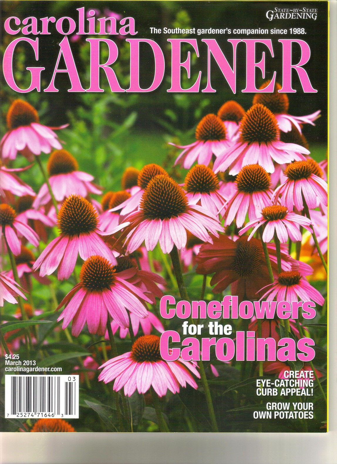 garden design magazine april 2013 u2013 thorplc - Carolina Home And Garden Magazine