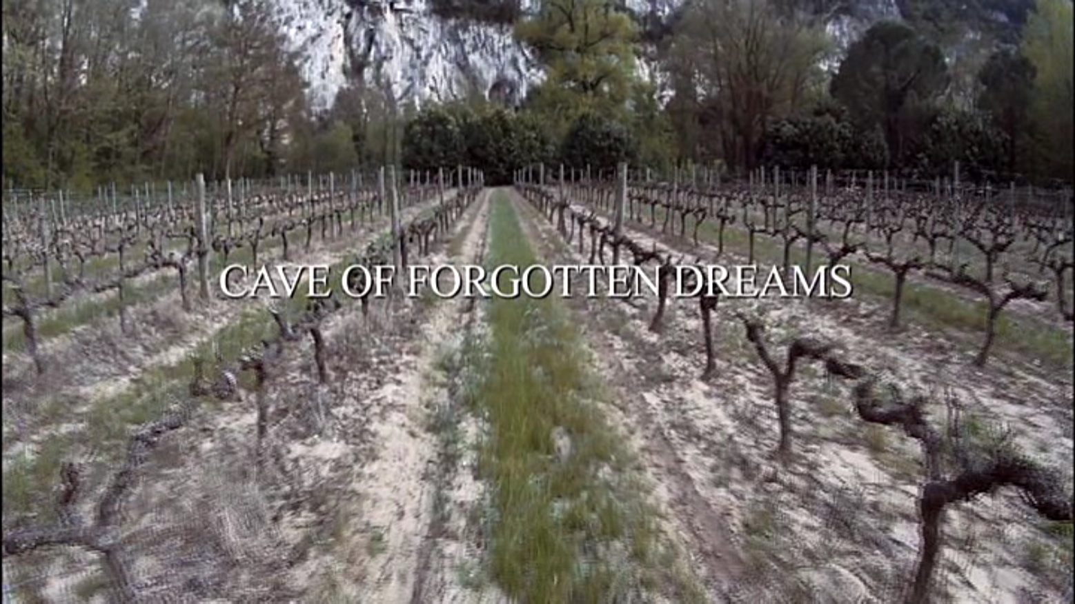 how to remember a dream you forgotten