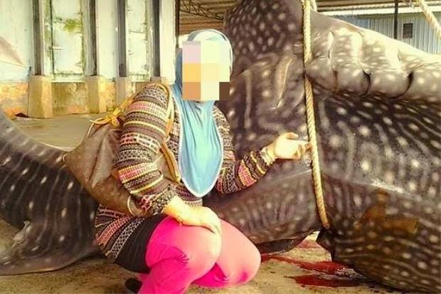 Gambar Wanita Melayu Bergambar Dengan Ikan Paus Dikecam