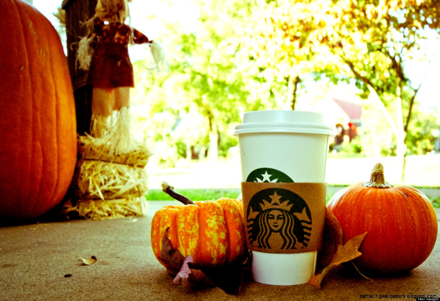 Pumpkin Spice Latte Shortage Starbucks Annual Autumn Treat In